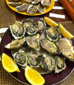 oysters (3)